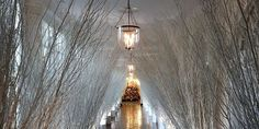 HGTV's White House Christmas Special - White House Christmas Decorations and Gingerbread Hosue