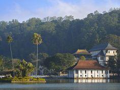 Capitale spirituelle du Sri Lanka, Kandy est une ville royale et verdoyante qui s'étire sur la rive d'un paisible lac artificiel, au creux d'une vallée tropicale