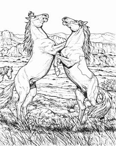 Wild Horse Coloring Pages | Wild Horse Animal Coloring Page or Download Fighting Wild Horse ...