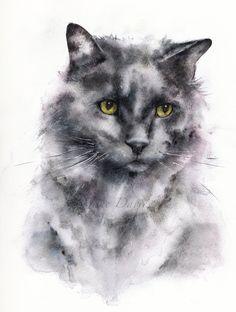 Pet portrait of a cat painted by watercolour artist Jane Davies