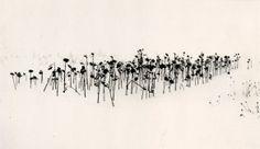 """Sunflowers, Sanai, Hokkaido, Japan"" – MichaelKenna"