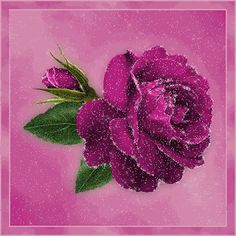 Glitter Graphics: the community for graphics enthusiasts! Glitter Gif, Glitter Roses, D Flowers, Beautiful Flowers, Gifs, Cool Pictures Of Nature, Bloom Blossom, Rose Images, Beautiful Gif