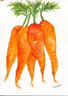 Carrots watercolor painting original vegetables 5 x 7 original watercolor painting bunch  carrots, small veggie artwork, culinary watercolor by SharonFosterArt on Etsy