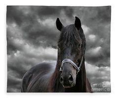Animal Fleece Blanket featuring the photograph Thunder The Dark Horse, Square by Sandra Huston #darkhorse #fleeceblanket #equinedecor
