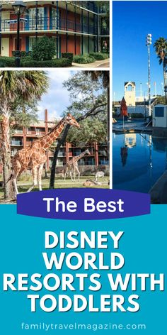 Walt Disney World has so many wonderful resorts, and they are all family-friendly. There are some resorts that are best with toddlers and young kids - here are our favorites. Best Disney World Resorts, Best Disney Resort, Walt Disney World, Disney Vacation Club, Disney Cruise Line, Disney Vacations, Disney World Tips And Tricks, Disney Tips, Disney Parks
