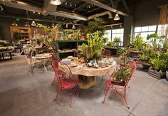 Terrain: home & garden stores