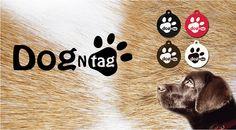 Chránené heslom: Dogntag – interaktívna známka pre psa