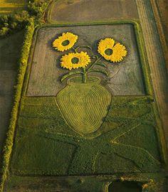 Stan Herd art work