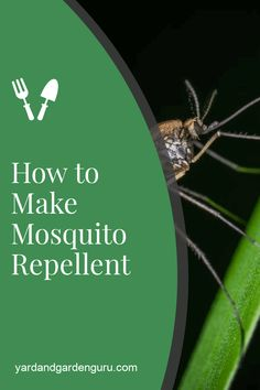 how to make mosquito repellent the and way. We show you how to make your own mosquito repellent for cheap!