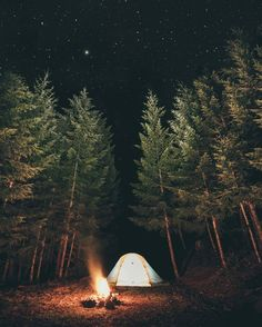 RV And Camping. Great Ideas To Think About Before Your Camping Trip. For many, camping provides a relaxing way to reconnect with the natural world. If camping is something that you want to do, then you need to have some idea Camping And Hiking, Camping Life, Outdoor Camping, Family Camping, Camping Hacks, Camping Trailers, Backpacking, Tent Camping, Camping Gear