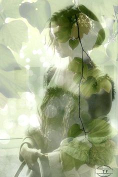 Lost in memories Double Exposition, Double Exposure Photography, Multiple Exposure, Creative Colour, Color Themes, Shades Of Green, Ethereal, The Dreamers, Serenity