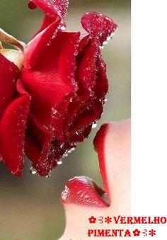 Vermelho Pimenta