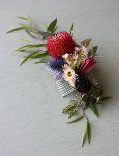 Growing and arranging beautiful Australian Native Flowers and all things Proteaceae. Wedding Hair Flowers, Hair Comb Wedding, Flowers In Hair, Bridal Hair, Wedding Bouquets, Wedding Dresses, Diy Wedding Reception, Wedding Set, Lace Wedding