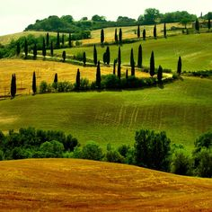 tuscan green | Cycle Tuscany - photo by Giampoalo Macorig via Flickr