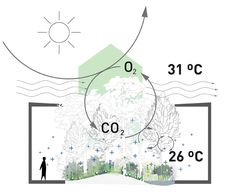 """The pavilion of Austria at the EXPO 2015 in Milan, entitled """"breathe.austria"""" is a woodland designed by a team led by Klaus K Loenhart to encourage environment sustainability. Architecture Drawings, Concept Architecture, Landscape Architecture, Architecture Design, Parametric Architecture, Architecture Collage, Chinese Architecture, Landscape Design, Expo Milano 2015"""