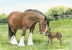 Will I be as big as you when I grow up?  Shire horse and miniature donkey. A  watercolour by Sylvia Twiss