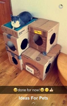 cardboard house ideas inspirational diy cat house diy cardboard cat castle for our sweetest girls hearts of cardboard house ideas Cat House Plans, Cat Tree Plans, Cat House Diy, House Dog, Cool Cat Trees, Diy Cat Tree, Cardboard Box Houses, Diy Cardboard, Cardboard Castle