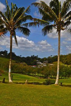 In the parish of St. Thomas, at more than 1000 feet above sea level sits this cosy, hidden-away treasure, Highland, The Best View in Barbados