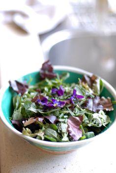 Backyard Salad: My Foray into Urban Foraging
