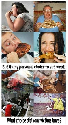 #vegan #vegetarian inspiration; please consider the victims of your choices