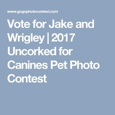 Vote for Jake and Wrigley  | 2017 Uncorked for Canines Pet Photo Contest