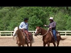 """""""Introduction to Cowboy Dressage"""" - Part 2 of 5 parts with Richard Winters and Eitan Beth-Halachmy (Founder of Cowboy Dressage). As seen on RFD-TV. Horse Exercises, Horse Riding Tips, Show Jumping, Horse Training, Horse Care, Dressage, Cowboy Hats, Westerns, Horses"""