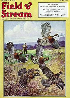 Field and Stream December, 1925