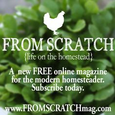 Have you checked out From Scratch yet?