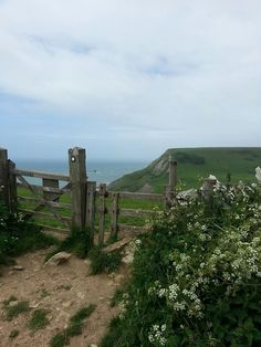 South Downs, England I've walked sections of this long path several times -- loved being along the sea!