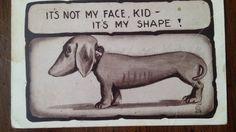 Antique Comic Dog postcard Dachshund by PUGHALLVINTAGE on Etsy