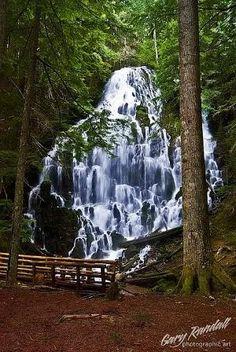 Ramona Falls near Mount Hood, Oregon. by francis