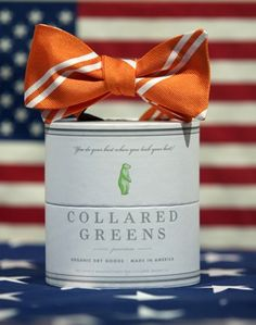 Venable Bow in Orange by Collared Greens   Country Club Prep