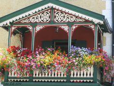 Blooming Balcony♥  Villabassa, Trentino-Alto Adige, Italy
