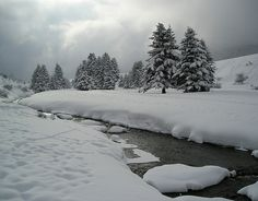 Ruisseau à Payolle by philippe.ducloux, via Flickr
