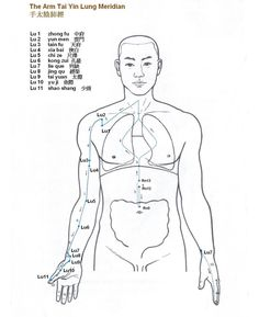 Arm Tai Yin Lung Meridian