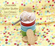 Michelles Tasty Creations: Homemade Chocolate Nutter Butter Ice Cream