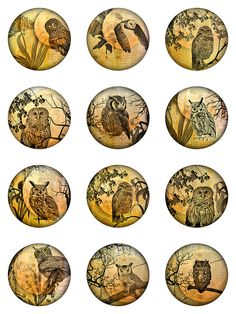Owl Moon Ephemera Botanical Digital Collage Sheet Rounds Circles JPEG Images (S-23)