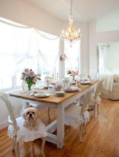 kitchen shabby chic white dog