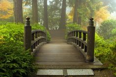 Garden bridge by chandranee