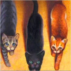 In Front Is Hollyleaf To The Left Jayfeather And Lionblaze Right Warrior CatsFansLe
