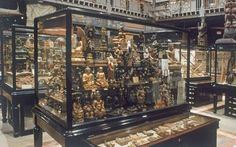 Pitt Rivers Museum - Oxford