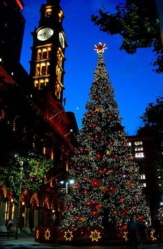 Sydney Westin, Town Square Christmas Tree