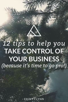 12 Tips To Help You Take Control of Your Business | As a freelancer, entrepreneur, or small business owner, there's a lot to learn. Click through to check out these essential tips and resources to help you grow your business and move forward.