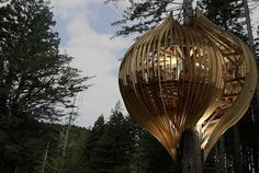 This architecturally inspiring tree house is actually a restaurant.