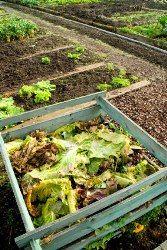 How to Make Homemade Compost