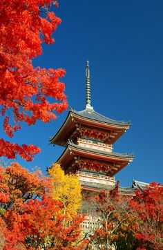 Looking for #romantic ideas? Try something different this time and head to Kiyomizu-dera, a #popular Buddhist temple and UNESCO World Heritage Site in Kyoto, Japan. #honeymoon #ideas