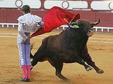 Plaza Mexico Bullfights - Mexico City