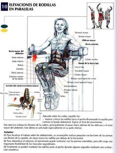 Elevaciones  de rodillas en paralelas | knee raises in parallel - http://fitnessallya.com/elevaciones-de-rodillas-en-paralelas-knee-raises-in-parallel/