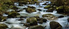 Take a hike with great views of the Middle Saluda River in Jones Gap State Park in South Carolina - VisitSouth.com