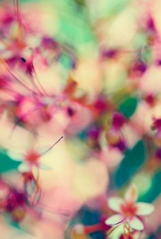 Abstract Spring by Laura George #pattern #flowers